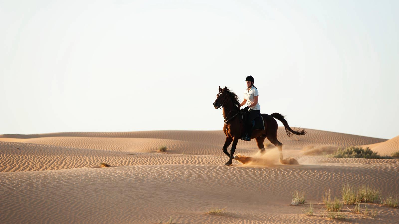 Al Maha, Dubai