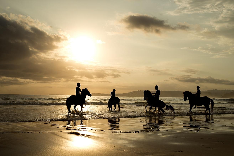 Experiences Horseback Riding.x64944