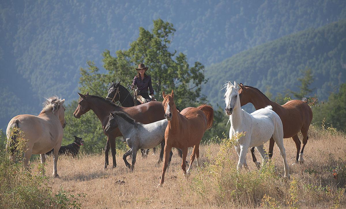 Chile - Horseback Riding At Andbeyond Vira Vira Lake District