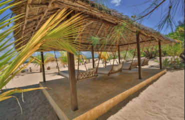 Wazi Dubu Lamu Island Kenya 15