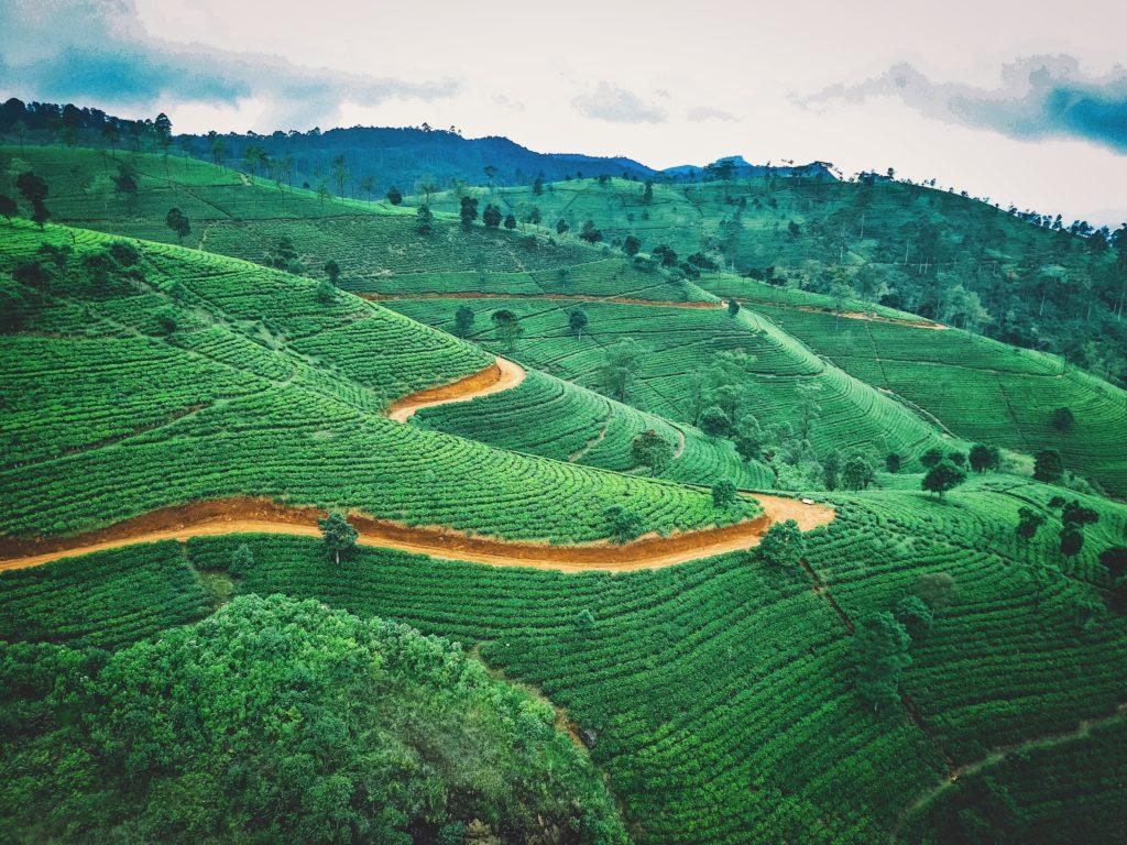 Hill Country, Sri Lanka, Jaromir Kavan I9eaar4dwi8 Unsplash