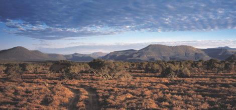 Eastern Cape 1