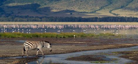 Ngorongoro Crater3