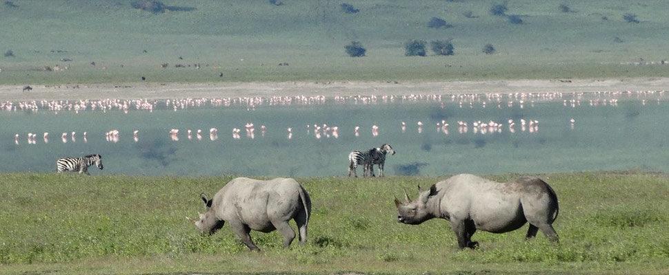 Ngorongoro Crater4