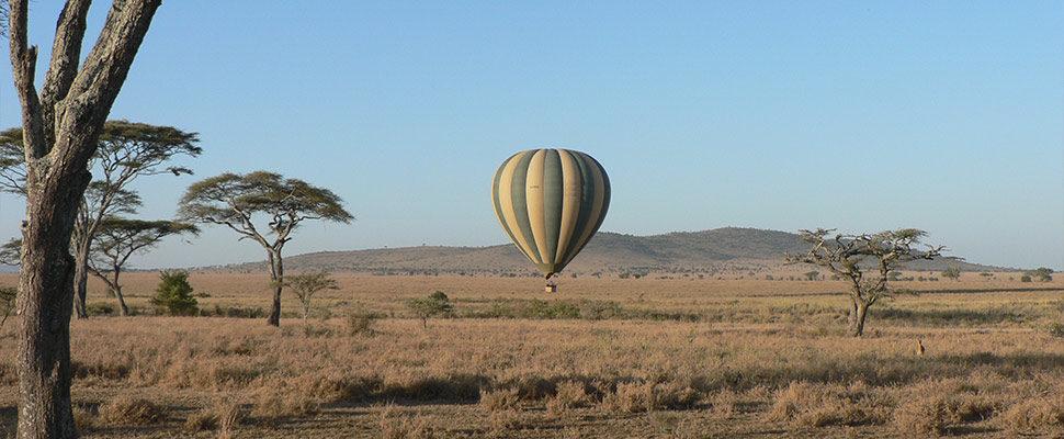 Serengeti3