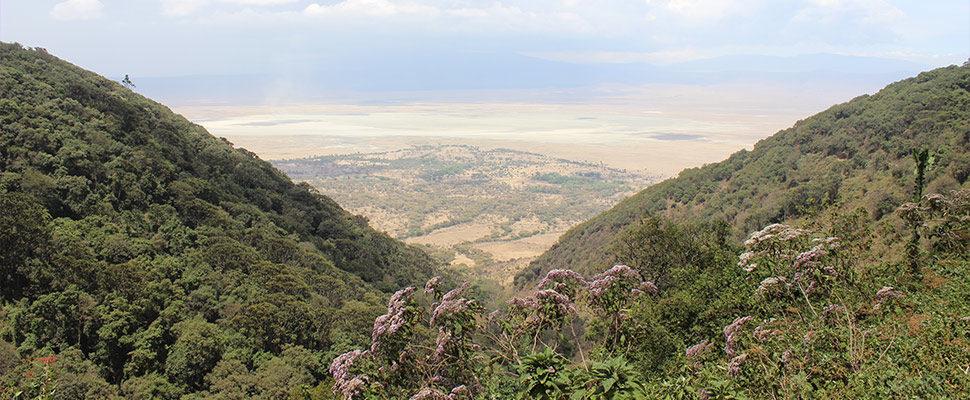 Ngorongoro Crater Lodge11