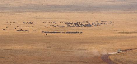 Ngorongoro Crater Lodge12