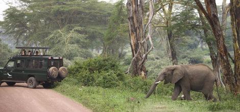 Ngorongoro Crater Lodge8